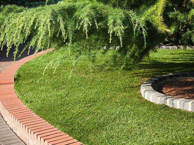 Everest Artifical Grass shown curved round a red brick finish