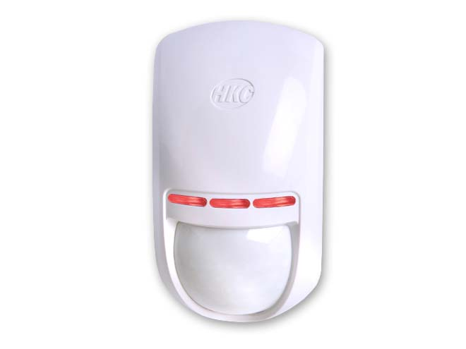 Motion Detector from Everest Security